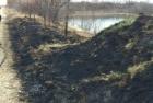 Flurbrand in der Gemeinde-Gstettn