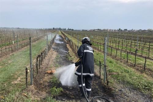 Flurbrand nach Weingartenberäucherung